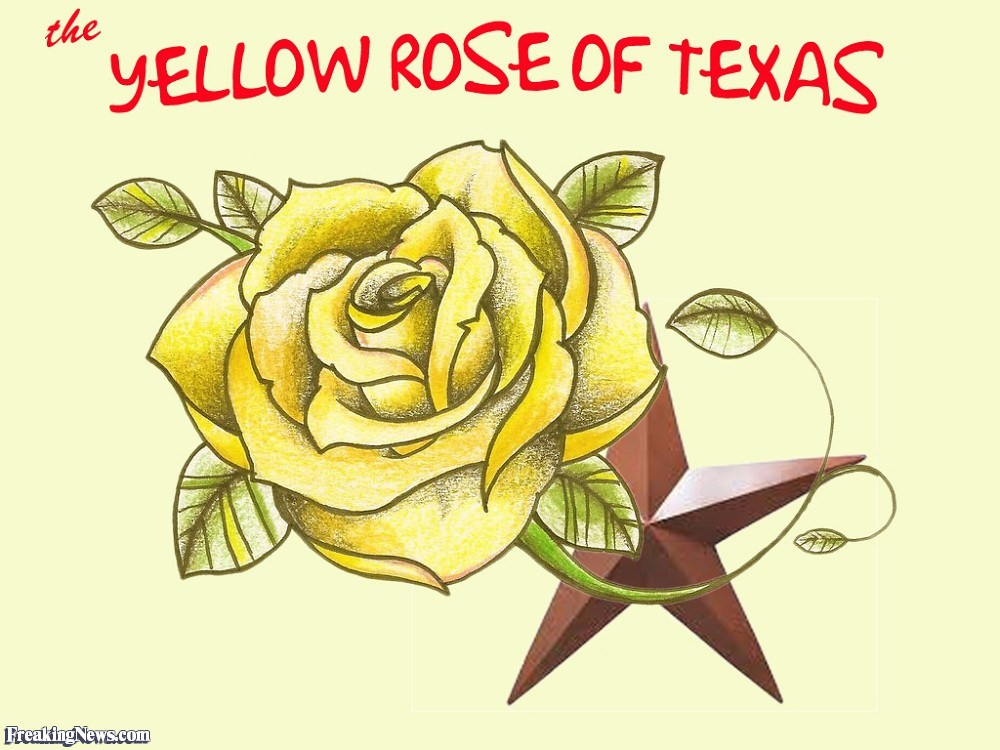 Yellow rose of texas clipart picture transparent stock Yellow rose of texas clipart 4 » Clipart Portal picture transparent stock