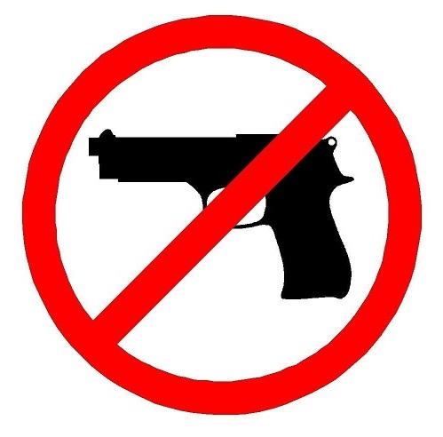 Yes to concealed carry clipart graphic library Small Steps to Concealed Carry | SlowFacts graphic library