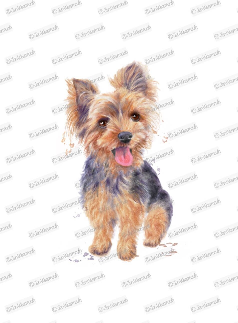 Yorkie clipart long hair image black and white Dog clipart yorkie clipart instant download. Digital ... image black and white
