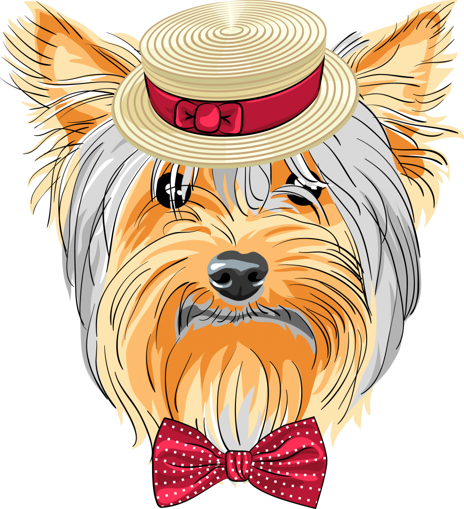 Yorkie thanksgiving clipart svg freeuse stock Yorkie Puppy Clipart at GetDrawings.com | Free for personal use ... svg freeuse stock