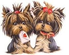 Yorkie with a cast clipart png free 354 Best Yorkies Make Me So Happy images in 2016 | Yorkie ... png free