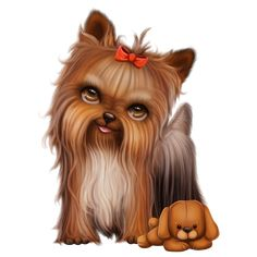 Yorkie with a cast clipart clip library 40 Best Yorkies images in 2019 | Yorkie, Yorkies, Yorkshire ... clip library