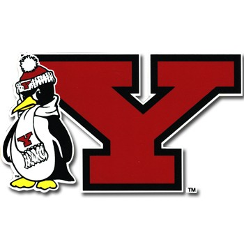Youngstown state logo clipart graphic freeuse library Youngstown State University Color Shock Decal - Everything ... graphic freeuse library