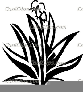 Yucca flower clipart free vector stock Clipart Yucca Flower | Free Images at Clker.com - vector ... vector stock