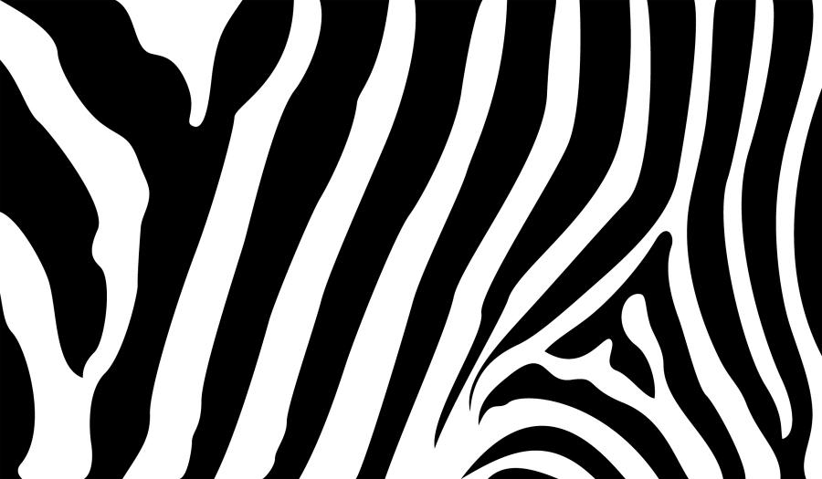 Zabra strips clipart clip art free Zebra Stripes - EPS Vector clip art free