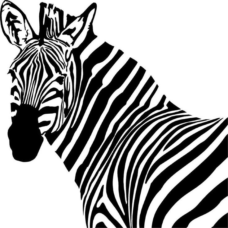Zebra coloring page, animal coloring page, adult coloring page ...   736x736
