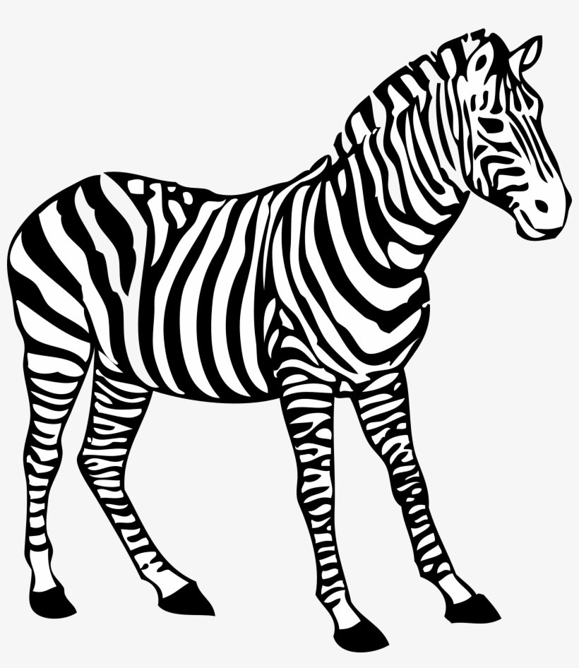 Zebra coloring clipart black and white picture library download Zebra Clipart Black And White - Colouring Picture Of Zebra ... picture library download