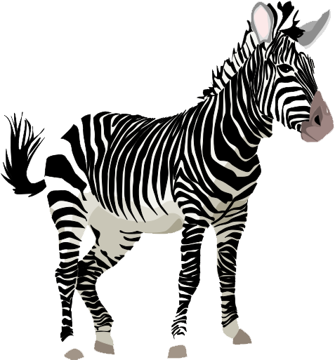 Zebra png clipart graphic black and white download Download Zebra PNG Clipart - Free Transparent PNG Images ... graphic black and white download