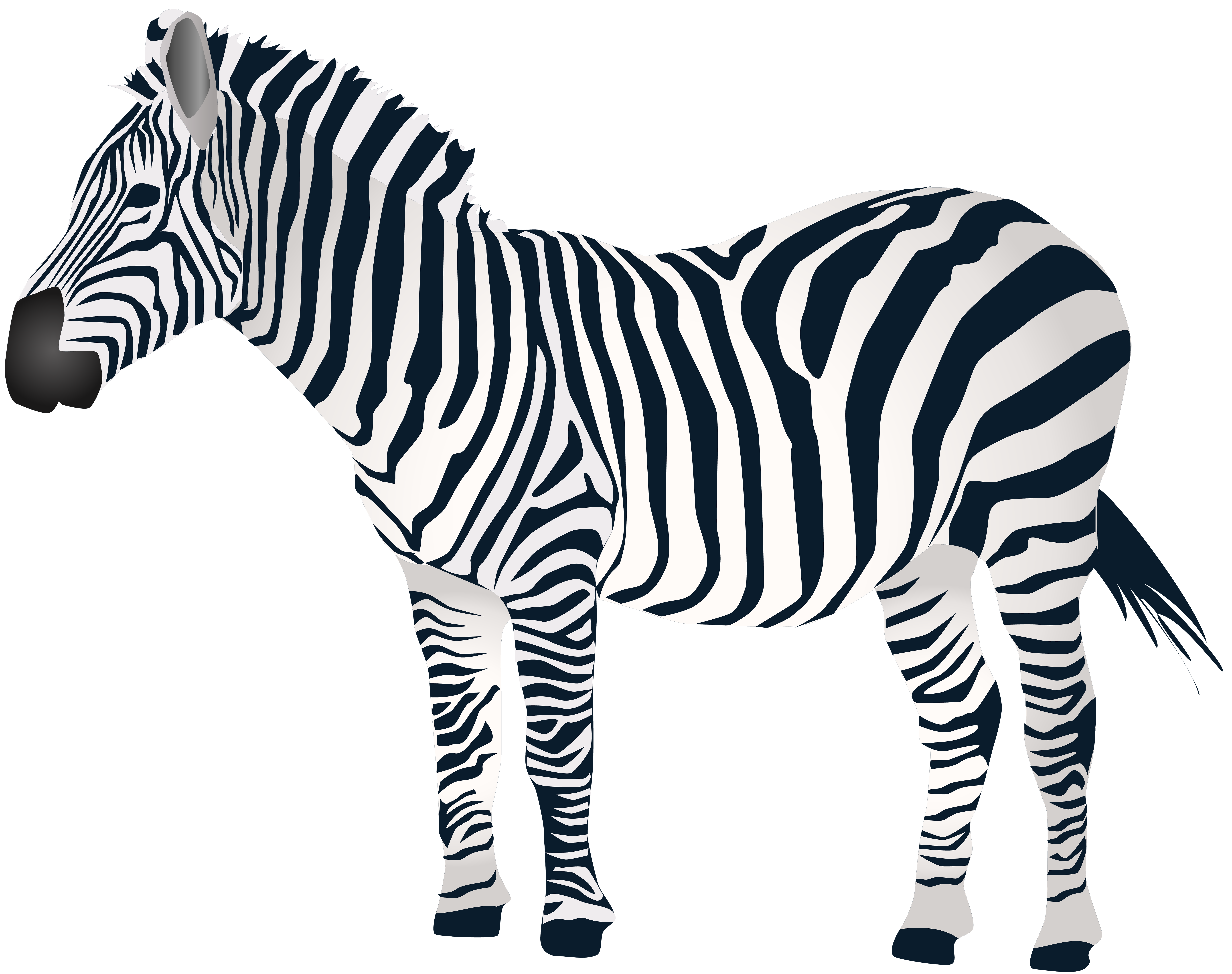 Zebra png clipart svg transparent library Zebra PNG Clip Art | Gallery Yopriceville - High-Quality ... svg transparent library