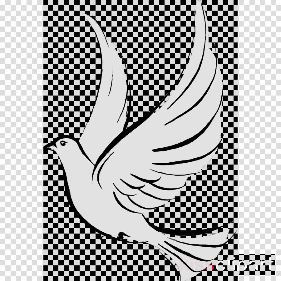 Zeta phi beta dove clipart banner black and white download Bird Line Drawing clipart - Bird, White, Wing, transparent ... banner black and white download