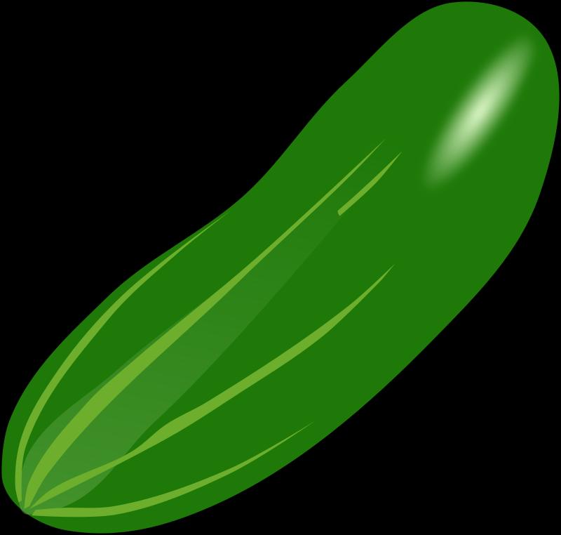 Zucchini clipart vector free Cucumber Vegetable Zucchini Clip art - cucumber 800*762 transprent ... vector free
