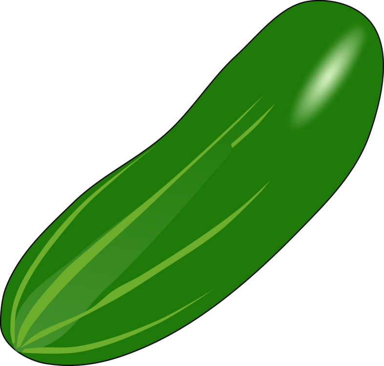 Zucchini clipart free jpg free stock Cucumber Vegetable Thumbnail Food free commercial clipart - Cucumber ... jpg free stock